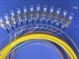 12芯束状尾纤,3M光纤冷接子,3M光纤快速连接器