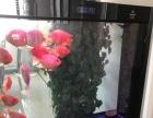热带鱼血鹦鹉便宜出售,养了两年了,健康活泼