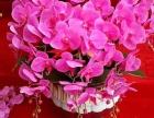 人和花卉出售各种鲜花绿植盆景可送货接绿化工程
