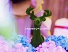 息县爱诺婚礼 时时刻刻都在改变 只为跟息县其他婚庆同行不一样