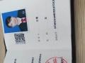 济宁专业刑事案件律师