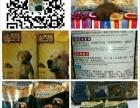 新大帝犬粮全宁夏发售中
