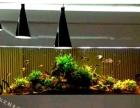苏州定制大理石鱼缸 大型鱼缸鲨鱼缸 大理石龙鱼缸
