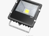 大功率30W led隧道灯 投光灯高棚灯广告灯 普瑞芯片 质保3