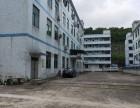 同乐独院厂房1100平米1-5楼出租可分租