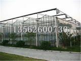 潍坊连栋阳光板温室报价连栋薄膜温室建造