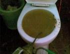 宝山大华疏通马桶蹲坑疏通安装厕所管道疏通下水管改装
