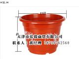 吉林塑料花盆专业的塑料花盆供应商推荐