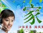 中天家政——泾阳较专业性保洁公司