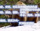 在北京办美容执照地址变更需要多长时间