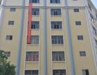 2楼5 6 7楼出租 写字楼