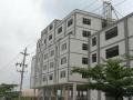 广州白云区仓库出租,全新托管模式,专为电商打造