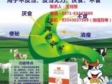 牛羊不反刍怎么治疗 金大众胃动力促牛羊反刍饲料肉牛羊育肥