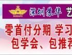 深圳布吉唱歌培训班 酒吧职业歌手培训班 随到随学