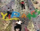 金山攀岩墙体育运动设备定制攀爬架娱乐设备工厂直销