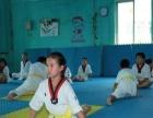 芝罘区惠安小区康力跆拳道馆暑假班开始招生啦