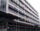 塘头工业区一楼整层1700平无公摊仓库厂房出租