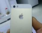 金色苹果5S