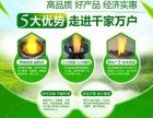 氢能油新能油碳氢油醇基燃料