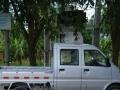 儋州那大小货车拉货,搬家,长短途货运
