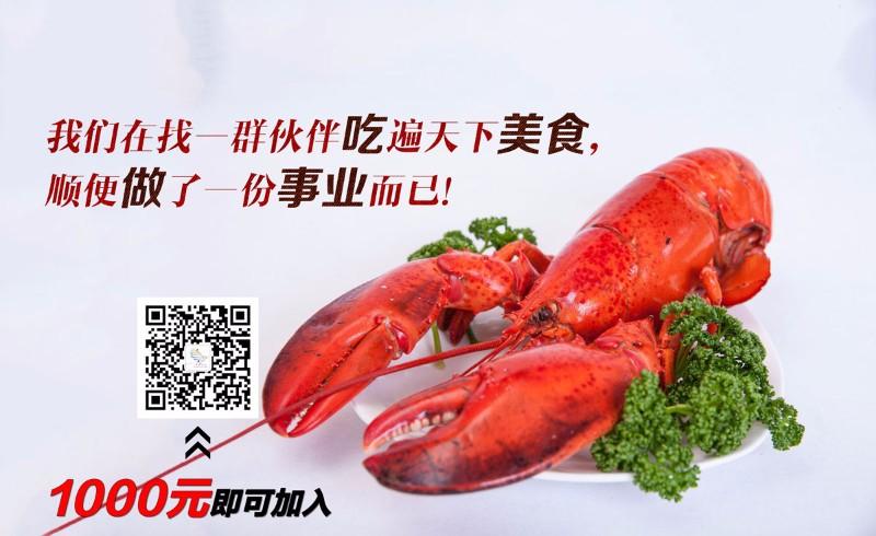 引流-厨房里新鲜的大龙虾.jpg