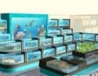 大型海鲜池设计及制作