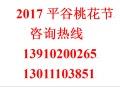 2017年平谷桃花节日期 2017平谷桃花节一日游 二日游