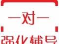 荆州小学三六年级一对一辅导丨作文奥数英语补习丨放心家教