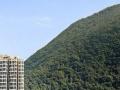 常州出发去香港澳门四天三晚海洋公园特价线路 480元全含