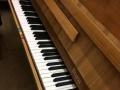 钢琴低价千元出售。
