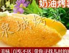 薯上煌烤红薯联系方式创业者都喜欢这个品牌