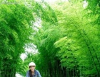 长江大学成人高等教育2016年招生