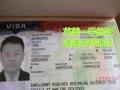 想不被拒签不要在犹豫 实力出签 经验保障 签证办理英美直飞