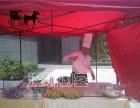 惠州惠城年会策划围餐包办丨海鲜大咖供应