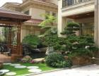 长沙庭院设计/私家花园设计/庭院绿化价格案例找植来植趣