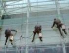 南沙专业高空外墙清洗公司城市蜘蛛人