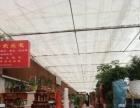 自强西路成熟花卉市场花店转让--联城推广