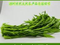 深圳蔬菜配送公司,好的口碑一起来见证