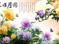 杭州刺绣墙纸厂家直销免费赠送版本