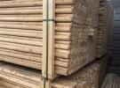 唐山小林建材批发竹竿,竹片,菜架竹,竹架板,园林绿化支撑杆