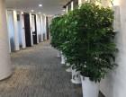 中期大厦商务中心+带全套家具+3.4.7号线镇坪路