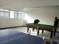 北京台球桌、乒乓球台、篮球架出售