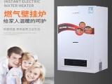 洗浴家用采暖供暖爐兩用熱水器供暖燃氣壁掛爐定制批發