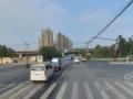 中海御道路一号 一线江景房 带独立阳台 全新配置 拎包入住