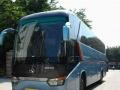 旅游大巴55至59座、别克7座,奥迪A6旅游车租赁