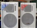 100瓦教室会议室多功能厅用蓝牙无线音箱比丽普BLP-115