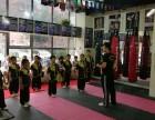 北京市专业武术表演培训特技培训首选龍圣搏击俱乐部