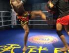 成都承武门提供优质的武术散打搏击格斗跆拳道培训,免费试练一次