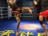 成都承武門提供優質的武術散打搏擊格斗跆拳道培訓,免費試練一次
