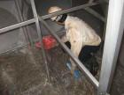 泉州二次供水清洗水池水箱清洗